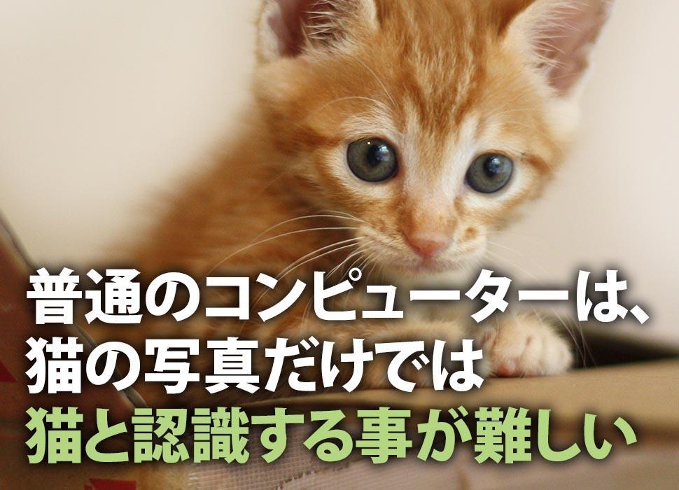 普通のコンピューターは、猫の写真だけでは猫と認識する事が難しい